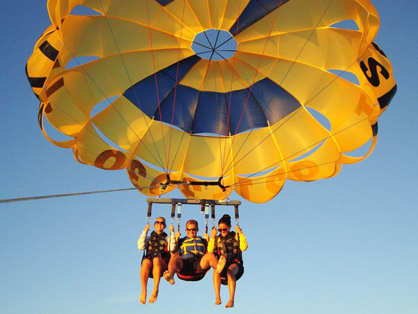 Englewood parasailing-dolphins